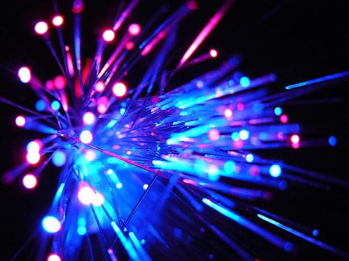 Posa fibra ottica NZD
